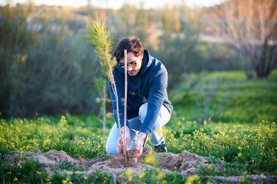 Moda sostenible reforestación
